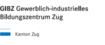 metall-schraenke-schweiz24